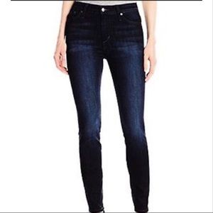 🆕 Joe's Jeans High Rise Skinny TRISTA 29